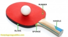 Table Tennis Improvement In Next Three Years