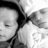 Cemburu Tak Dapat Perhatian, Labrador Serang Bayi Kembar Sampai Mati