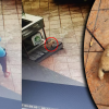 'Sampai Terberak Tahan Sakit!' - Tak Dapat Curi Kereta, Kucing Dibantingnya Sampai Mati