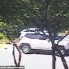 Anjing Kejar Kereta Tuannya Sepenuh Hati Setelah Sedar Dirinya Dibuang Namun.....
