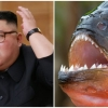 """Rasakan Katanya!"" - Jong-un Campak Jeneral Dalam Kolam Piranha"