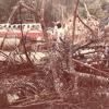 Misteri Nahas Pesawat MH653, Siapa Perampas Dan Apa Motifnya?