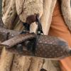 Beg Tangan Lagi Mahal Dari Pesawat, Boleh Simpan Barang Tak Tu?