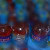 Banduan Sumbat Botol Budu Dalam Dubur Rakan Banduan