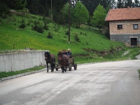 Orang2 kampung masih menggunakan kereta kuda