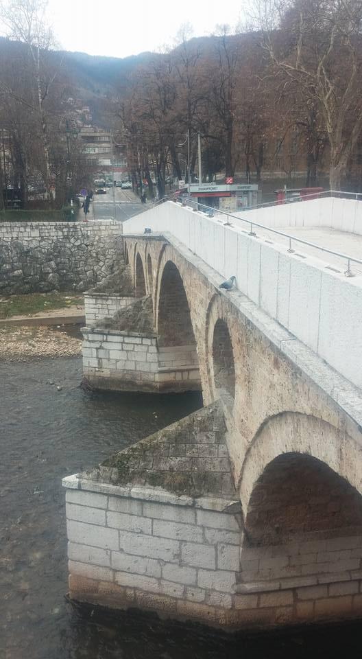 Latin's Bridge 1.jpg