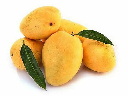 mango-fruit-mampazham-kerala-fruits-500x375.jpg