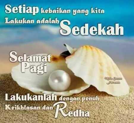 FB_IMG_1508686599277.jpg
