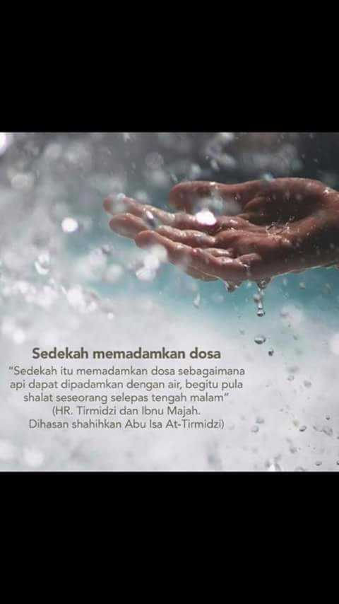 FB_IMG_1508686624626.jpg