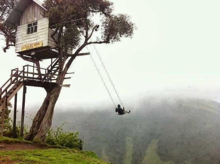 treehouse03.jpg