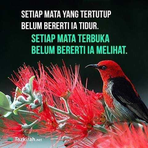 FB_IMG_1544869092836.jpg