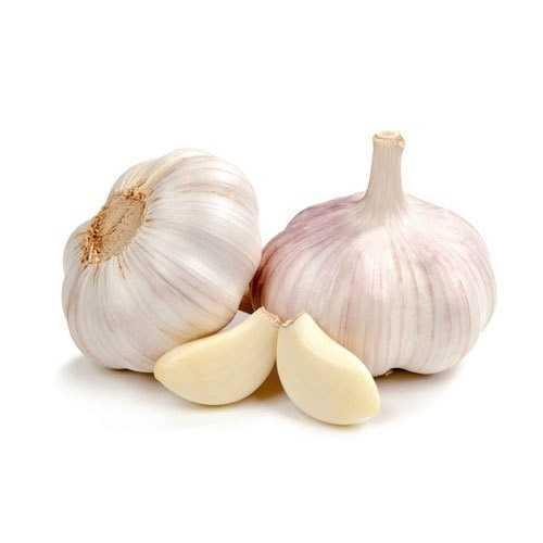 fresh-garlic-500x500.jpg