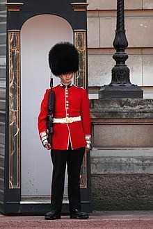 220px-Buckingham-palace-guard-11279634947G5ru.jpg