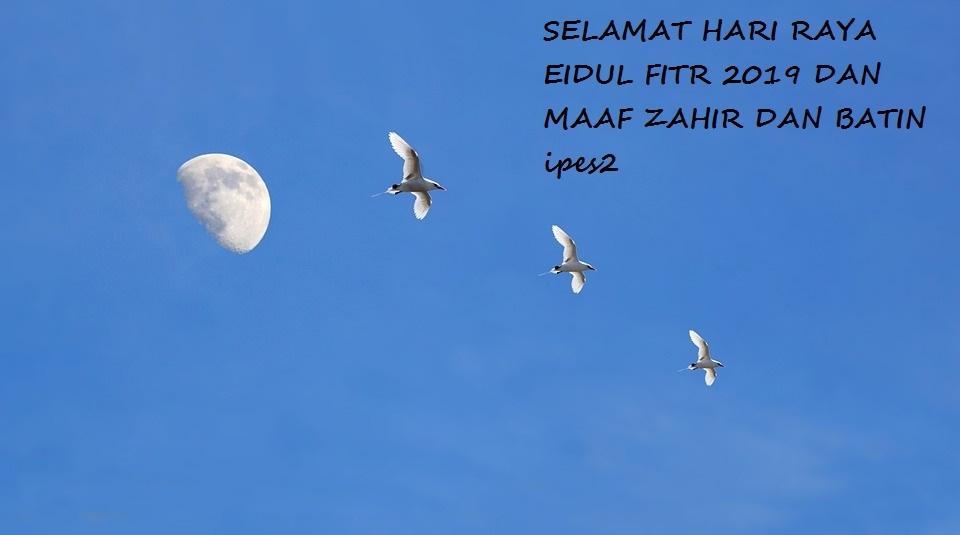 Kad Raya Eid Bird In Blue sky with moon.jpg