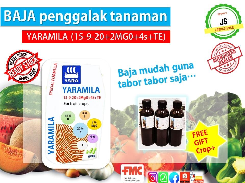 2MAR-YARAMILA1.jpg