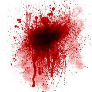 Lelaki Sembelih Anak Dan Hirup Darah Anak