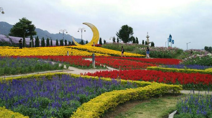 Taman Bunga Terbesar Di Thailand, Rambang Mata Pilih Sudut Swafoto!