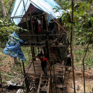 Tolak Dibantu, Suami Isteri Pilih Tinggal Di Hutan Sebagai Bukti Cinta