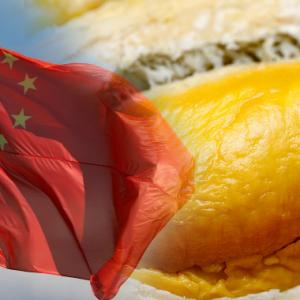 Pesta Durian Malaysia Di China Untung RM2.5 Bilion