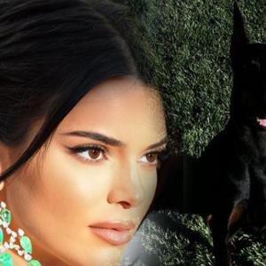 Kendall Jenner 'Cabut Lari' Lepas Anjing Peliharaan Gigit Kanak-kanak