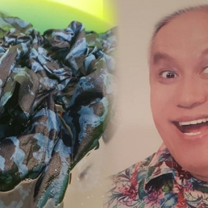 Bogel Dalam Rumah, Chef Wan Berhentikan Orang Gaji..