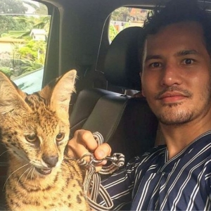 Lari Kerana Didera? Kucing 'Dodi' RM50K Milik Aliff Syukri Dijumpai Selepas Hilang..