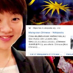 'Anj*ng, Anak Haram' -  Ada Pihak Sunting Wikipedia 'Malaysian Chinese' Dengan Kata-kata Kesat