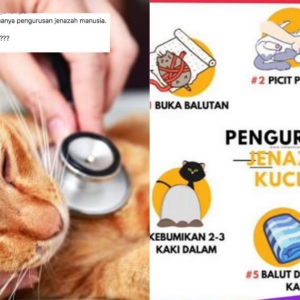 Pengurusan Jenazah Kucing, Kenapa Nak Kebumi Bangkai Sama Macam Manusia?