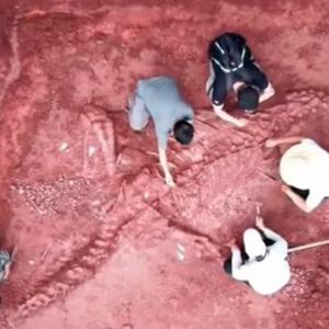 China Jumpa Fosil Dinosaur Gergasi Era Jurassic