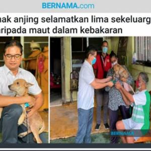 Anak anjing selamatkan 5 sekeluarga daripada maut dalam kebakaran