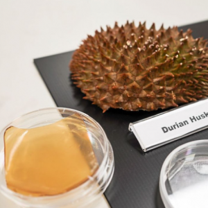 Akhirnya... Saintis Dah Jumpa Manfaat Kulit Durian